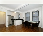 Carnegie Plaza, Extra Large1 bed/1 bath, fully renovated in a Pre-war Condo - Midtown West NYC!